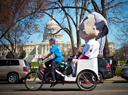 Capitol Pedicabs: Proudly pedaling our services across our nation's capitol!
